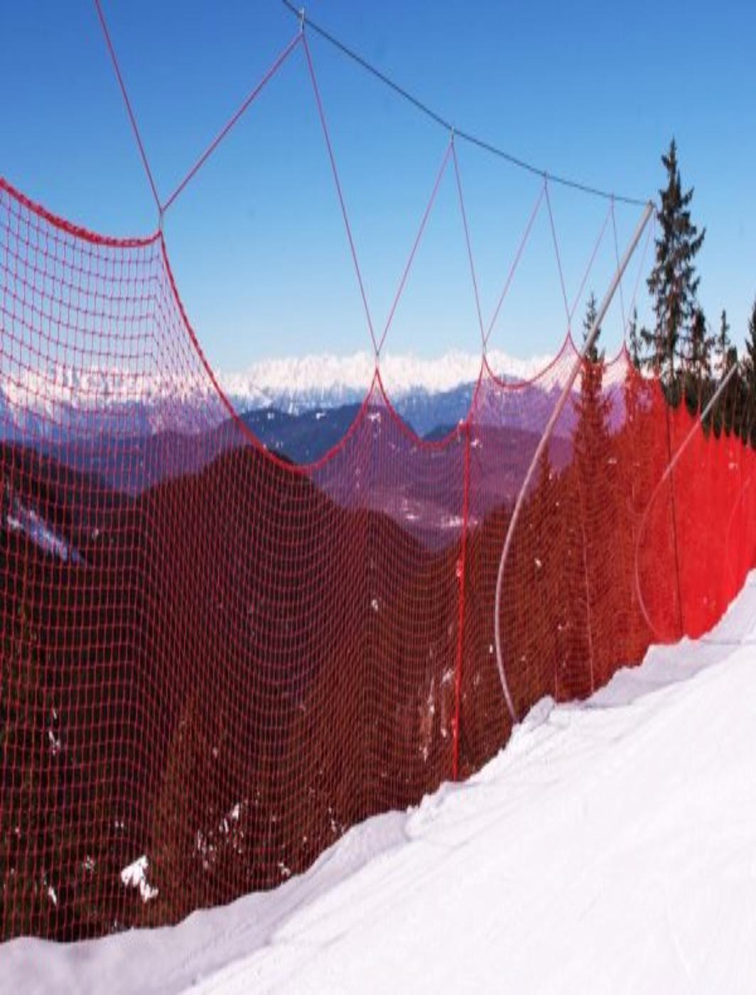 Plasa protectie pentru schi TIP A